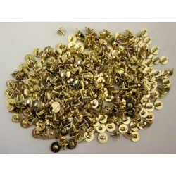 Gold and Silver Effect Screws